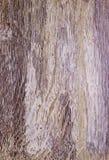 Ξύλινη σύσταση Ξύλινη ξύλινη σύσταση υποβάθρου για το σχέδιο και τη διακόσμηση Στοκ Φωτογραφία