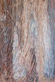 Ξύλινη σύσταση Ξύλινη ξύλινη σύσταση υποβάθρου για το σχέδιο και τη διακόσμηση Στοκ Εικόνα