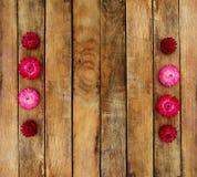 Ξύλινη σύσταση Πάνω από τα λουλούδια φθινοπώρου Στοκ Φωτογραφία