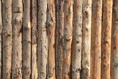 Ξύλινη σύσταση φλοιών Στοκ φωτογραφίες με δικαίωμα ελεύθερης χρήσης