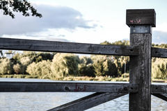 Ξύλινη σύσταση Στοκ φωτογραφία με δικαίωμα ελεύθερης χρήσης