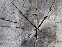 Ξύλινη τέχνη του σχεδίου Στοκ φωτογραφία με δικαίωμα ελεύθερης χρήσης