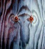 Ξύλινοι κόμβοι Στοκ εικόνα με δικαίωμα ελεύθερης χρήσης