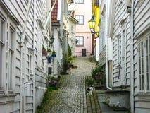 Ξύλινοι Λευκοί Οίκοι Στοκ Εικόνες