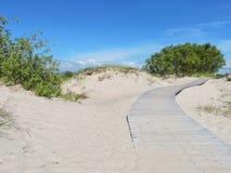 Ξύλινοι πορεία και αμμόλοφος Στοκ φωτογραφίες με δικαίωμα ελεύθερης χρήσης
