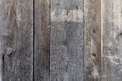Ξύλινοι τοίχοι για το υπόβαθρο Στοκ Εικόνες