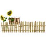 Ξύλινοι φράκτης καμπυλών και ηλίανθος λουλουδιών Στοκ Εικόνα