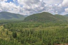 Ξύλινοι λόφοι βουνών Στοκ φωτογραφία με δικαίωμα ελεύθερης χρήσης