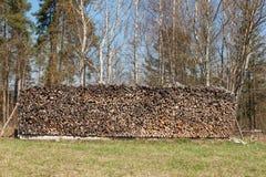Ξύλινος έτοιμος για το χειμώνα Οικολογική ξύλινη θέρμανση Εργασία στη δασονομία Στοκ φωτογραφία με δικαίωμα ελεύθερης χρήσης