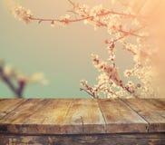 Ξύλινος αγροτικός πίνακας μπροστά από το άσπρο δέντρο ανθών κερασιών άνοιξη φιλτραρισμένη τρύγος εικόνα επίδειξη προϊόντων και έν Στοκ εικόνες με δικαίωμα ελεύθερης χρήσης