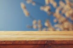 Ξύλινος αγροτικός πίνακας μπροστά από το άσπρο δέντρο ανθών κερασιών άνοιξη φιλτραρισμένη τρύγος εικόνα επίδειξη προϊόντων και έν Στοκ Εικόνες