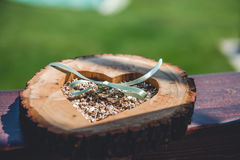Ξύλινος κάτοχος για τα γαμήλια δαχτυλίδια Κλείστε επάνω την όψη Στοκ Φωτογραφία