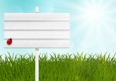 Ξύλινος καθοδηγήστε στο πράσινο λιβάδι ελεύθερη απεικόνιση δικαιώματος