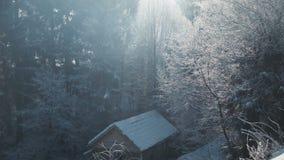 Ξύλινος κατοικήστε στο χειμερινό ξύλο απόθεμα βίντεο