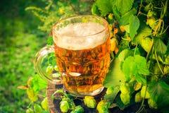 Ξύλινος κορμός μπύρας πιντών χρυσός Στοκ Φωτογραφία
