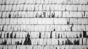 Ξύλινος μονοχρωματικός οριζόντιος σύστασης τοίχων στοκ εικόνα