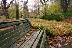 Ξύλινος πάγκος με τα φύλλα στο πάρκο φθινοπώρου, βοτανικός κήπος, Ukrai Στοκ Φωτογραφίες