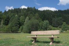 Ξύλινος πάγκος πάρκων σε ένα πάρκο Στοκ Εικόνες