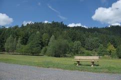 Ξύλινος πάγκος πάρκων σε ένα πάρκο Στοκ Φωτογραφία