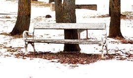 Ξύλινος πάγκος σε ένα πάρκο Στοκ φωτογραφία με δικαίωμα ελεύθερης χρήσης