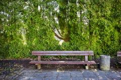 Ξύλινος πάγκος σε ένα πάρκο Στοκ Εικόνες