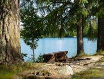 Ξύλινος πάγκος στο pleso Strbske στα βουνά Tatras Στοκ φωτογραφίες με δικαίωμα ελεύθερης χρήσης