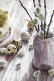 Ξύλινος πίνακας αυγών ορτυκιών υποβάθρου Πάσχας catkins Στοκ εικόνα με δικαίωμα ελεύθερης χρήσης
