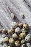 Ξύλινος πίνακας αυγών ορτυκιών υποβάθρου Πάσχας catkins Στοκ Εικόνες