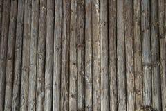 Ξύλινος παχύς τοίχος πόλων με το φυσικό υπόβαθρο Στοκ εικόνα με δικαίωμα ελεύθερης χρήσης