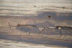 Ξύλινος που φοριέται Στοκ φωτογραφία με δικαίωμα ελεύθερης χρήσης
