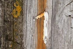 Ξύλινος τοίχος, αριθμός ένας Στοκ εικόνα με δικαίωμα ελεύθερης χρήσης