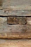 Ξύλινος τοίχος ζημίας από τον τερμίτη Στοκ Εικόνες