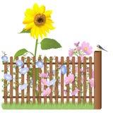 Ξύλινος φράκτης, λουλούδια και μπλε tit απεικόνιση αποθεμάτων