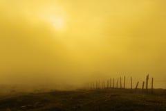 Ξύλινος φράκτης στο ομιχλώδες ηλιοβασίλεμα Στοκ Φωτογραφίες