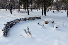 Ξύλινος χειμώνας Στοκ φωτογραφία με δικαίωμα ελεύθερης χρήσης