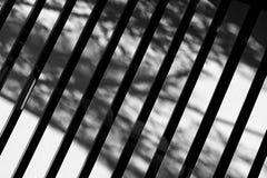 Ξύλινος Στοκ Εικόνες