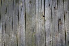 Ξύλινος mossy φράκτης. στοκ εικόνες