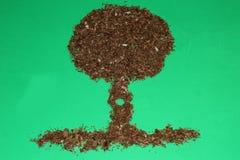 Ξύλινο δέντρο ξυρίσματος Στοκ φωτογραφίες με δικαίωμα ελεύθερης χρήσης
