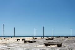 Ξύλινο ανάχωμα κοντά στον ωκεανό Στοκ φωτογραφίες με δικαίωμα ελεύθερης χρήσης