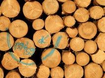 Ξύλινο απόθεμα Στοκ εικόνα με δικαίωμα ελεύθερης χρήσης