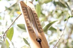 Ξύλινο θερμόμετρο Στοκ φωτογραφία με δικαίωμα ελεύθερης χρήσης