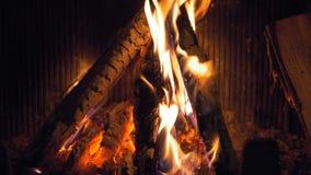 Ξύλινο κάψιμο στην εστία, σε αργή κίνηση, κινηματογράφηση σε πρώτο πλάνο απόθεμα βίντεο