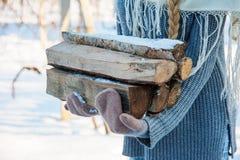 Ξύλινο και παλαιό τσεκούρι πυρκαγιάς Ανανεώσιμο στοιχείο συμπεριφοράς μιας ενέργειας Στοκ Εικόνες