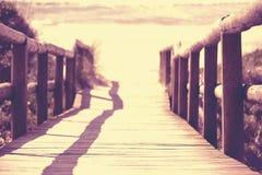 Ξύλινο καλοκαίρι θάλασσας άμμου παραλιών γεφυρών προοπτικής στοκ εικόνες με δικαίωμα ελεύθερης χρήσης