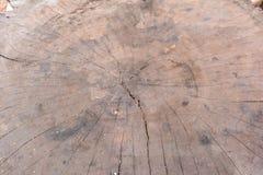 Ξύλινο κείμενο Στοκ Φωτογραφία