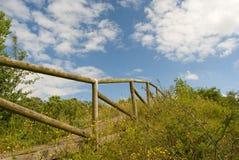 Ξύλινο κιγκλίδωμα της φυσικής διάβασης πεζών, που κατευθύνεται πρός τα πάνω, πάρκο λατομείων Newbold, UK Στοκ φωτογραφίες με δικαίωμα ελεύθερης χρήσης