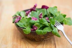 Ξύλινο κύπελλο με τα φύλλα και το radicchio σαλάτας καλαμποκιού Στοκ Φωτογραφίες