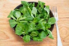 Ξύλινο κύπελλο με τα φύλλα σαλάτας καλαμποκιού Στοκ εικόνα με δικαίωμα ελεύθερης χρήσης