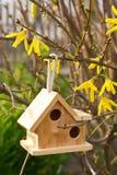 Ξύλινο να τοποθετηθεί κιβώτιο στο υπόβαθρο κήπων Στοκ εικόνα με δικαίωμα ελεύθερης χρήσης