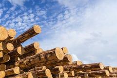 Ξύλινο δομικό υλικό ξυλείας για το υπόβαθρο και τη σύσταση ξυλεία Καλοκαίρι, μπλε ουρανός ακατέργαστος βιομηχανίες Στοκ Εικόνα